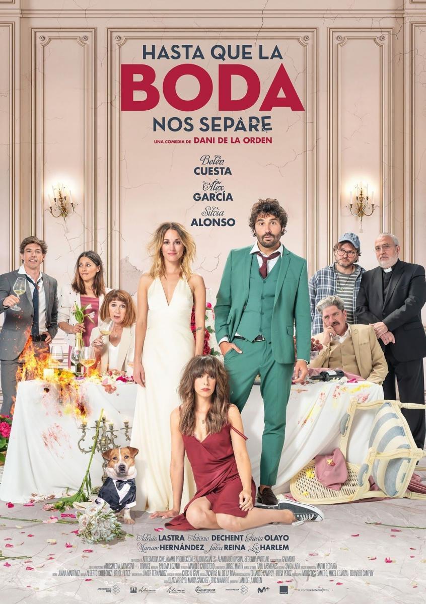 cartel de la película Hasta que la boda nos separe