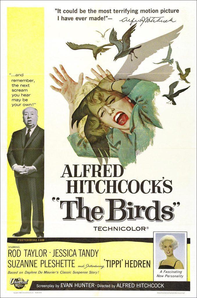 cartel de la película Los pájaros