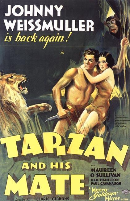 cartel de la película Tarzán y su compañera